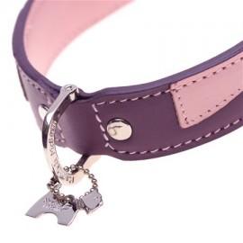 Alfie Purple Dog Collar