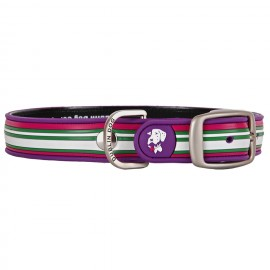 Dublin Dog All Style No Stink Waterproof Collar Classic Stripe Maui Sunrise