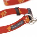 Hamish McBeth Paws Collar and Lead Set