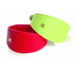 Bobby Leather Greyhound Dog Collar in red and lime green