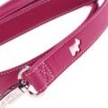 Hamish McBeth Pink Leash