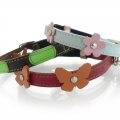 Dogorama Cat Collars