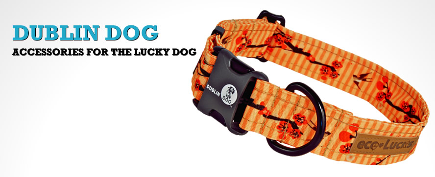 Dublin Dog Accessories for the lucky dog