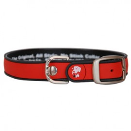 Dublin Dog All Style No Stink Waterproof Dog Collar Simply Solid Red and Grey