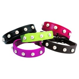 Bobby Rebelle Leather Dog Collar in all colours